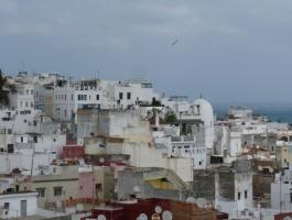 Tanger, magnifique Riad, titré, 180m2 au sol, Idéal maison d'hôtes