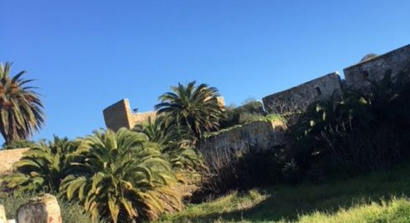 Assilah, exceptionnel, terrain de 2300 m2 dans la médina, mitoyen des remparts, situation unique.