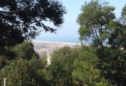 a vendre terrain titré,  boisé, Méduina, vue sur l'océan.